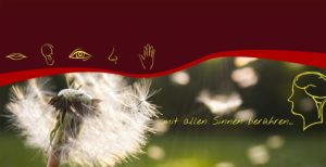 Banner Logopädie Plauen Jugler